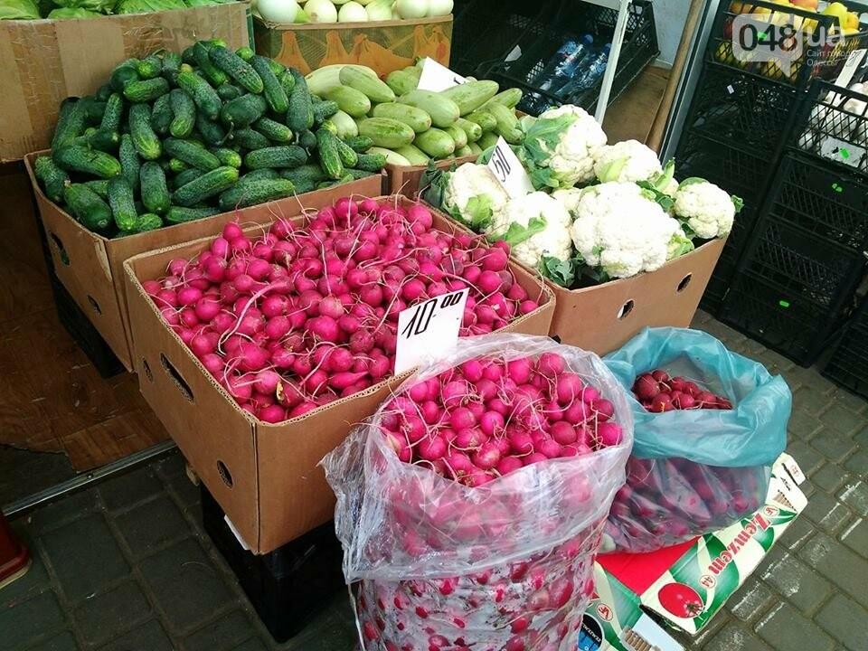 Одесские рынки завалили клубникой и первыми кабачками: обзор цен, - ФОТО, фото-6