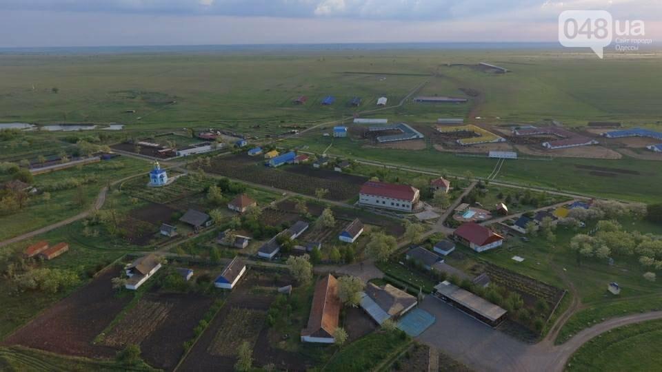 В Одесской области появится еще один заповедник, - ФОТО, фото-2