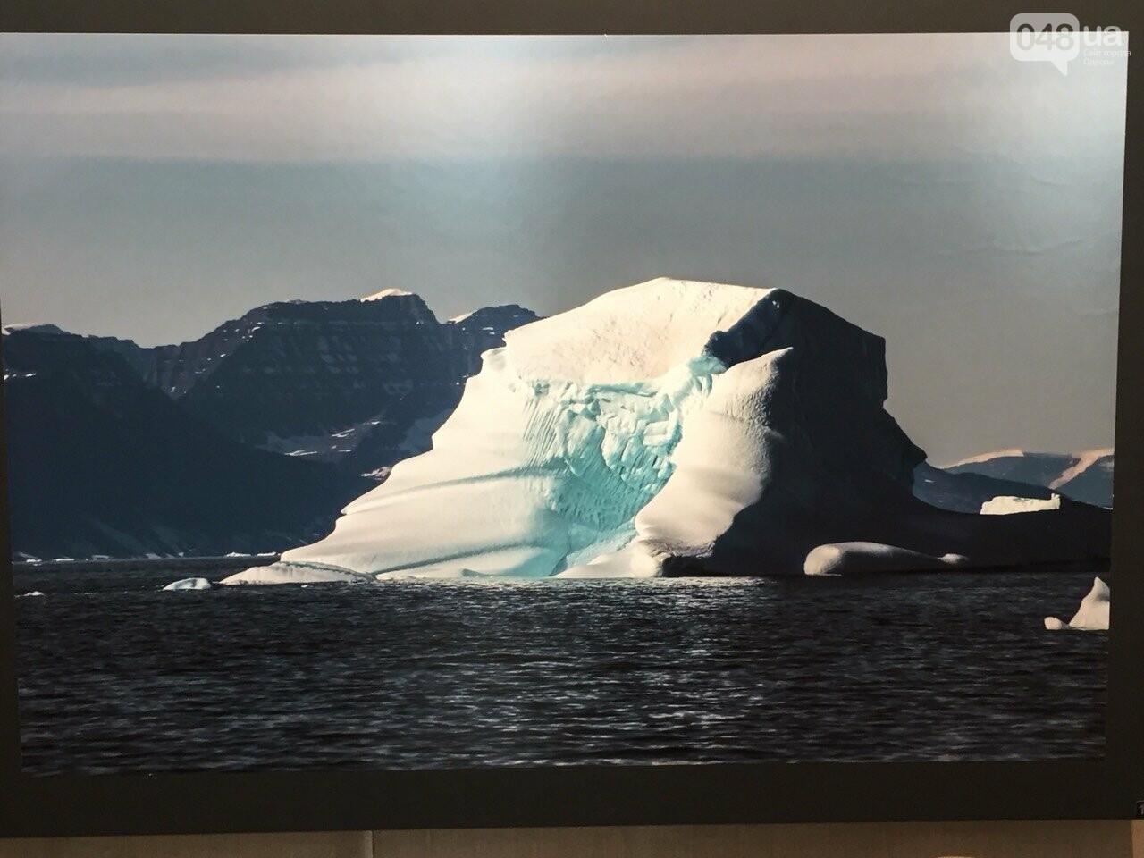 Арктическая сага: На фотовыставке в Одессе можно помочь детям, - ФОТО, ВИДЕО, фото-11