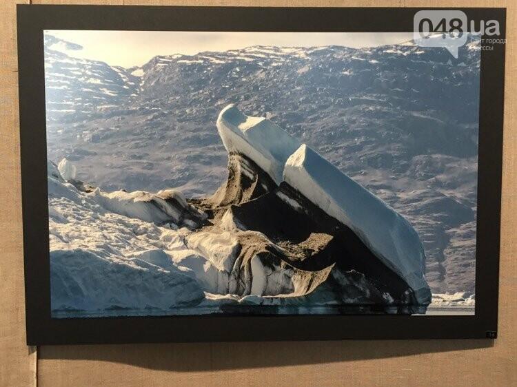 Арктическая сага: На фотовыставке в Одессе можно помочь детям, - ФОТО, ВИДЕО, фото-3