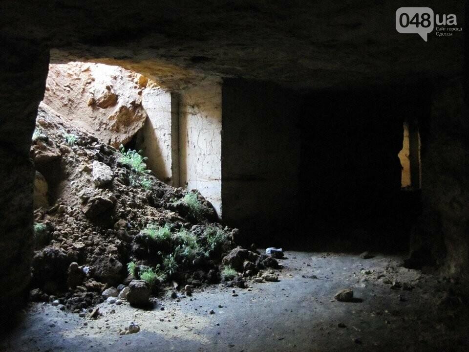Под Одессой дорога и частная усадьба провалились в катакомбы, - ФОТО, фото-3