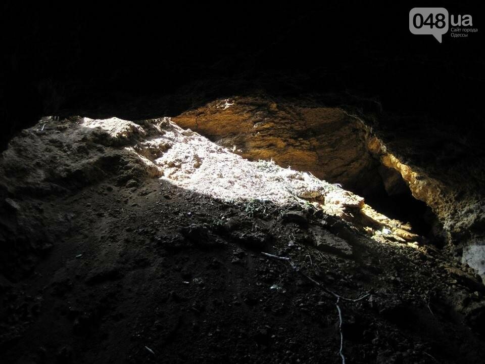 Под Одессой дорога и частная усадьба провалились в катакомбы, - ФОТО, фото-2