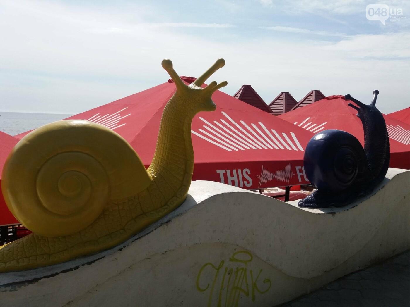 Одесским брюхоногим закрыли вид на море, - ФОТОФАКТ, фото-2