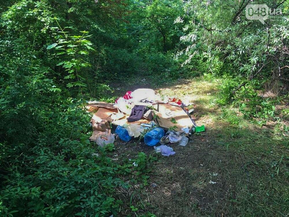 Погоня за мусором: одесситы поучаствовали в первом в истории Украины плоггинге, - ФОТО, фото-7