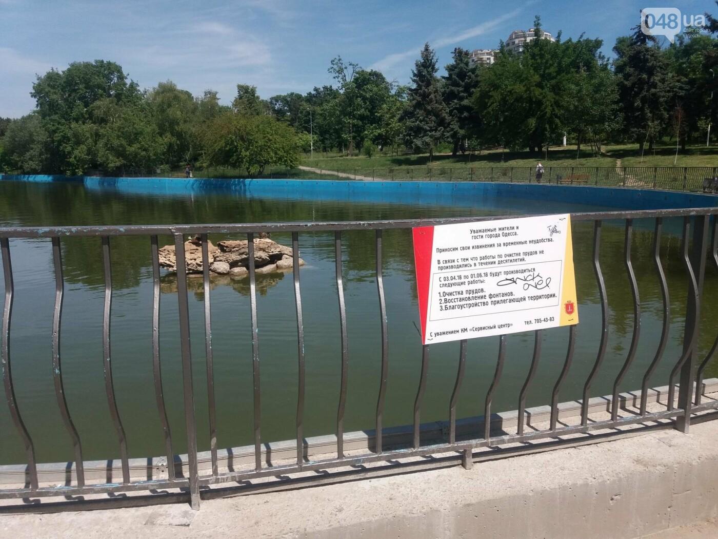 В Одесском парке заполняют водой очищенный пруд и устанавливают «сказочные лилии», - ФОТО, ВИДЕО , фото-5