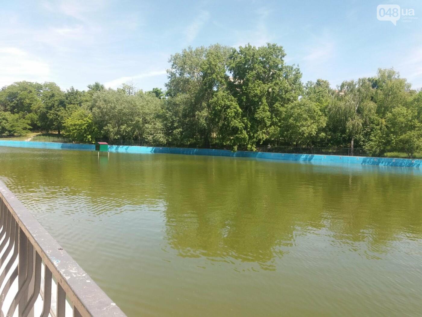 В Одесском парке заполняют водой очищенный пруд и устанавливают «сказочные лилии», - ФОТО, ВИДЕО , фото-6