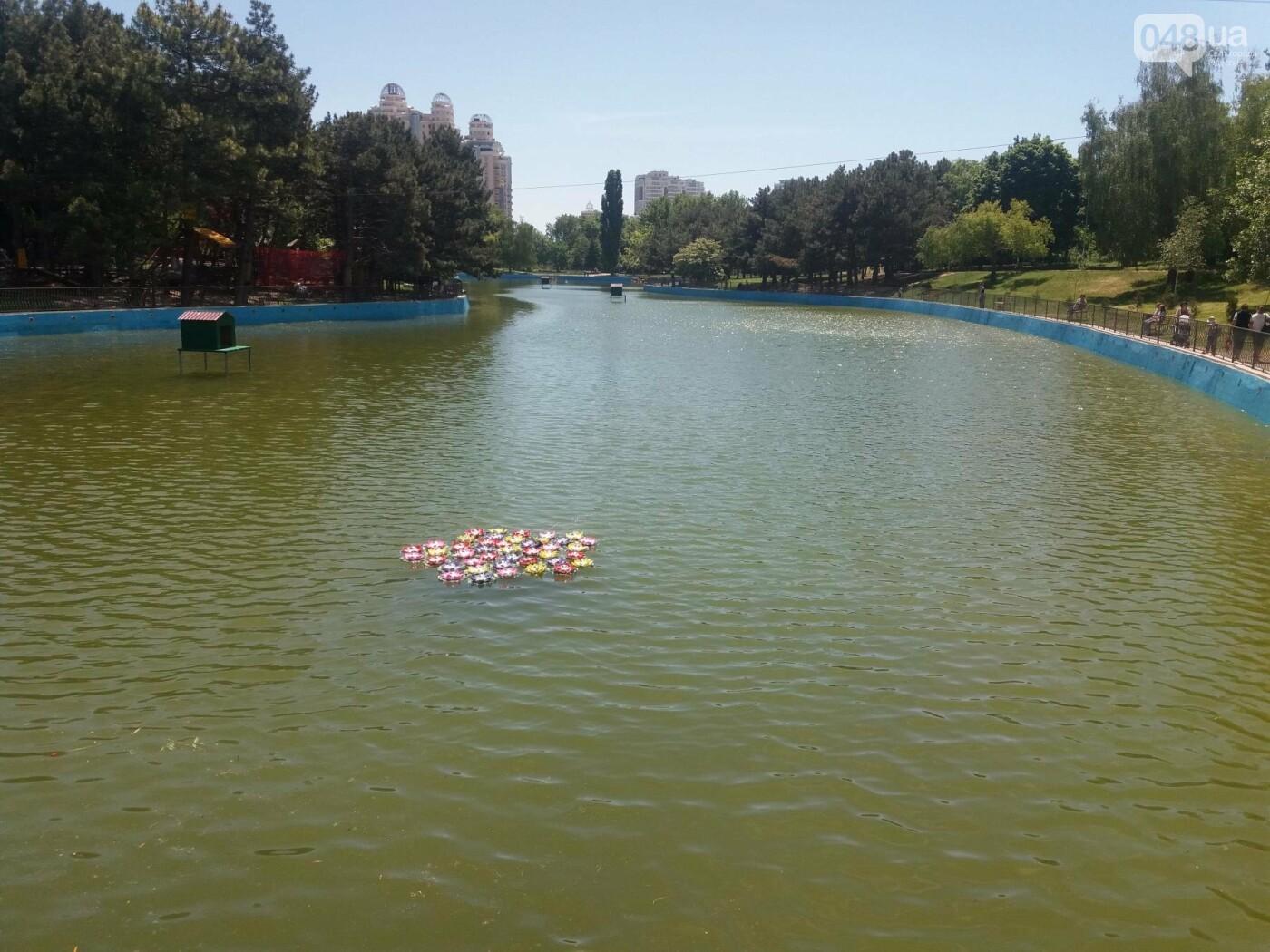 В Одесском парке заполняют водой очищенный пруд и устанавливают «сказочные лилии», - ФОТО, ВИДЕО , фото-4