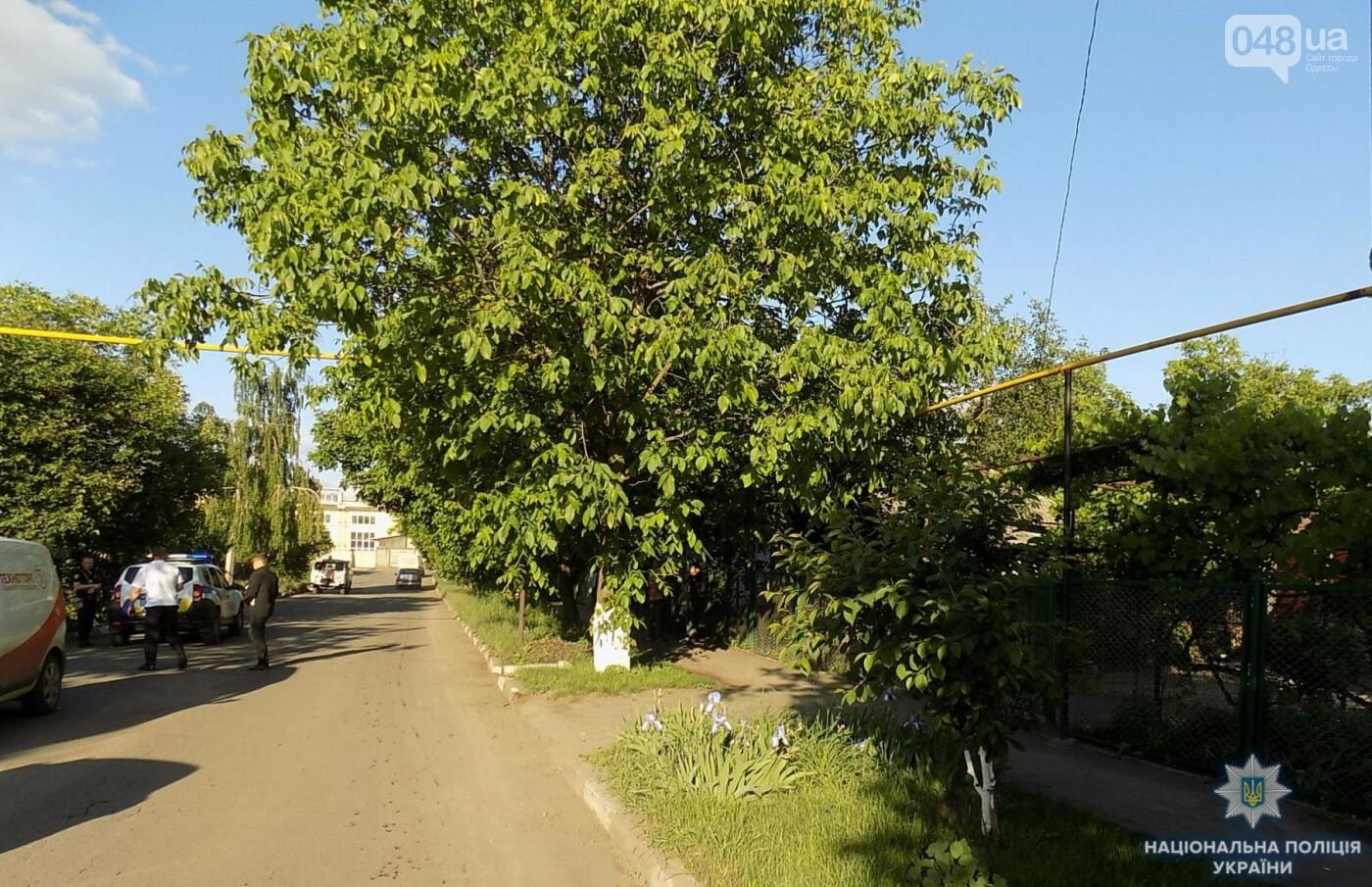 В Одесской области под микроавтобус попала шестилетняя девочка, - ФОТО, фото-2
