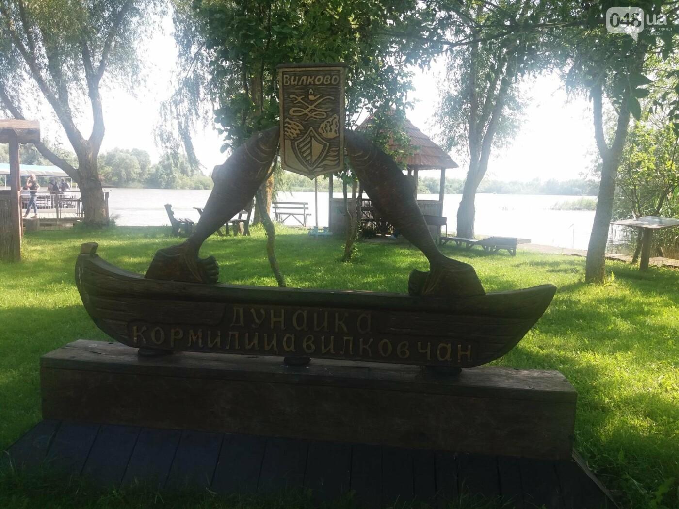Под Одессой готовятся попасть в Книгу рекордов Гиннеса, - ФОТО, ВИДЕО , фото-4