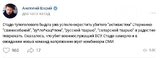 """Вместо """"Одесской Хатыни"""" - """"убийца десантника"""": Как Россия использует нападение на Стерненко, - ФОТО, фото-13"""