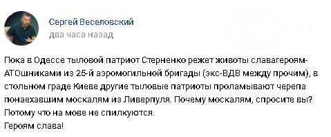 """Вместо """"Одесской Хатыни"""" - """"убийца десантника"""": Как Россия использует нападение на Стерненко, - ФОТО, фото-14"""