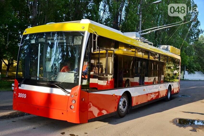 В Одессе троллейбусы и трамваи постепенно вытеснят частные маршрутки , фото-1