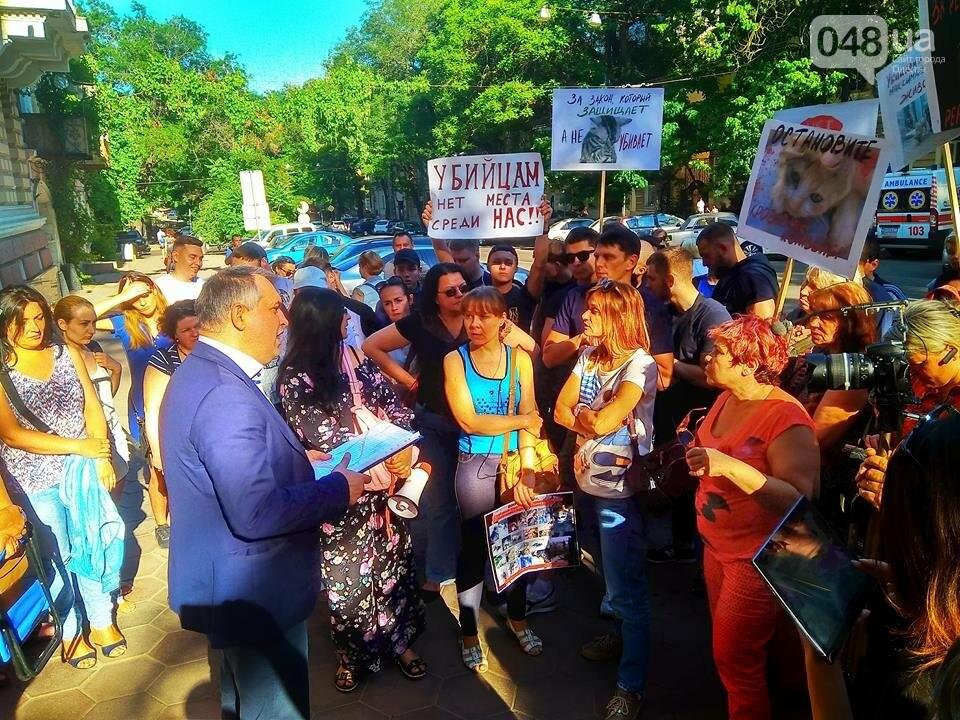 Одесские зоозащитники потребовали у полиции наказать садиста, - ФОТО, ВИДЕО, фото-7