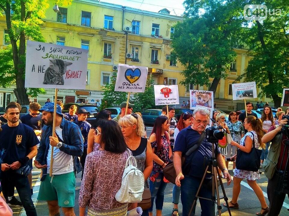 Одесские зоозащитники потребовали у полиции наказать садиста, - ФОТО, ВИДЕО, фото-4