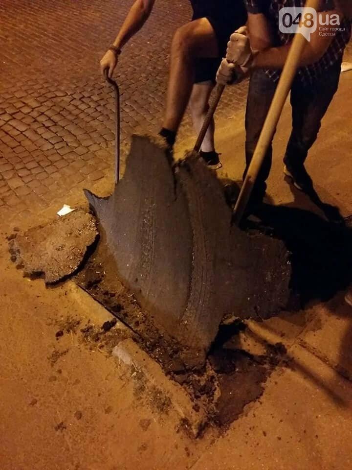 В Одессе экоактивисты сорвали асфальт там, где должны расти деревья, - ФОТО, фото-2