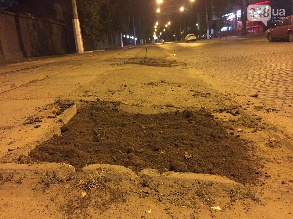 В Одессе экоактивисты сорвали асфальт там, где должны расти деревья, - ФОТО, фото-3