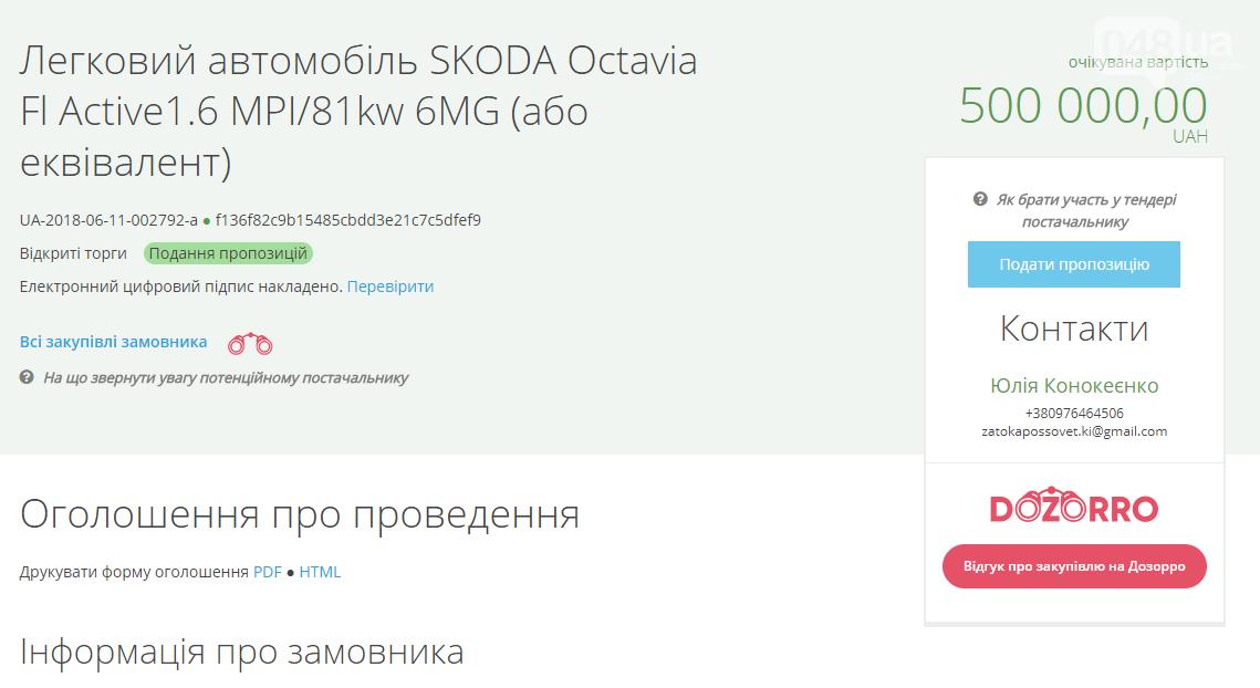 Под Одесской чиновники  решили прикупить за 500 тысяч коричневую машинку, - ФОТО , фото-1