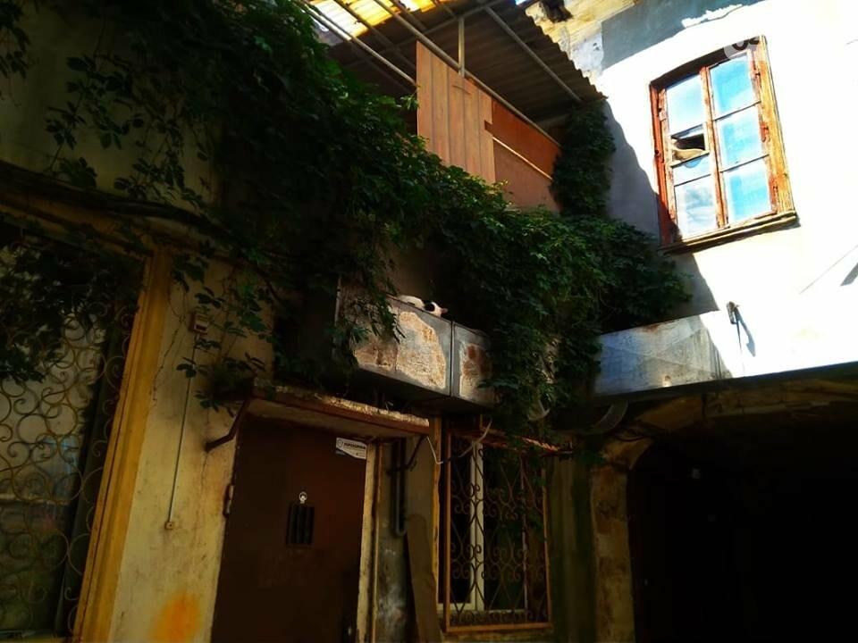 """В центре Одессы пожарные """"тушили"""" вытяжку ресторана, - ФОТО, фото-1"""