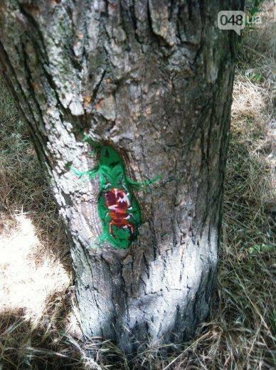 В дуплах деревьев в Одессе появились нарисованные совы, лисицы и еноты, - ФОТО, фото-7