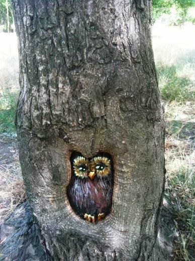 В дуплах деревьев в Одессе появились нарисованные совы, лисицы и еноты, - ФОТО, фото-1