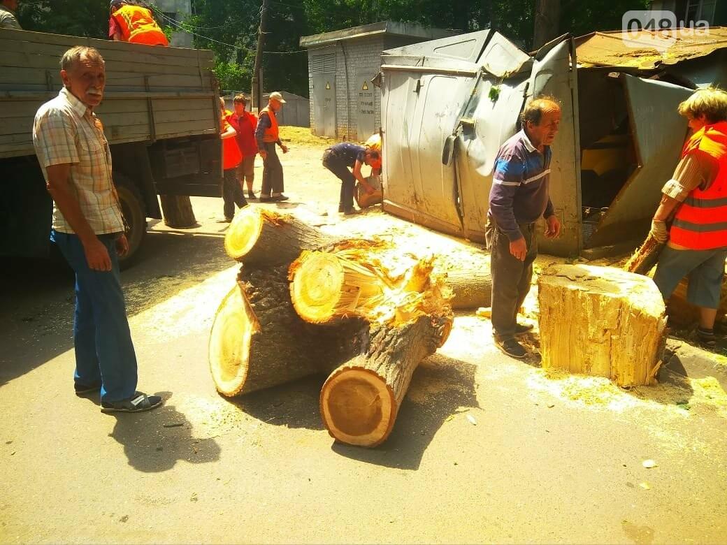 Одесские автомобилисты еще не знают, что их машины проломил тополь, - ФОТО, ВИДЕО, фото-7