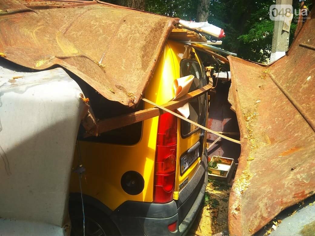 Одесские автомобилисты еще не знают, что их машины проломил тополь, - ФОТО, ВИДЕО, фото-6