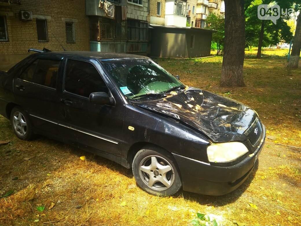 Одесские автомобилисты еще не знают, что их машины проломил тополь, - ФОТО, ВИДЕО, фото-4