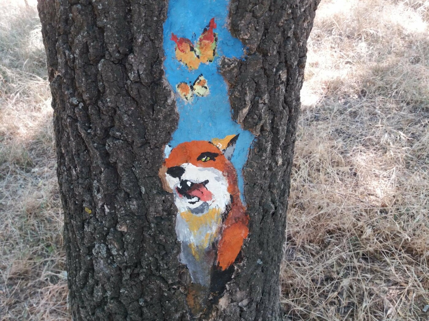 В Одесском парке появились необычные рисунки на деревьях, - ФОТО, фото-7