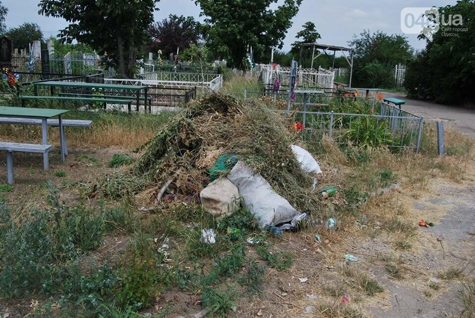 Под Одессой власти уничтожают уникальное казацкое кладбище, - ФОТОРЕПОРТАЖ, фото-4