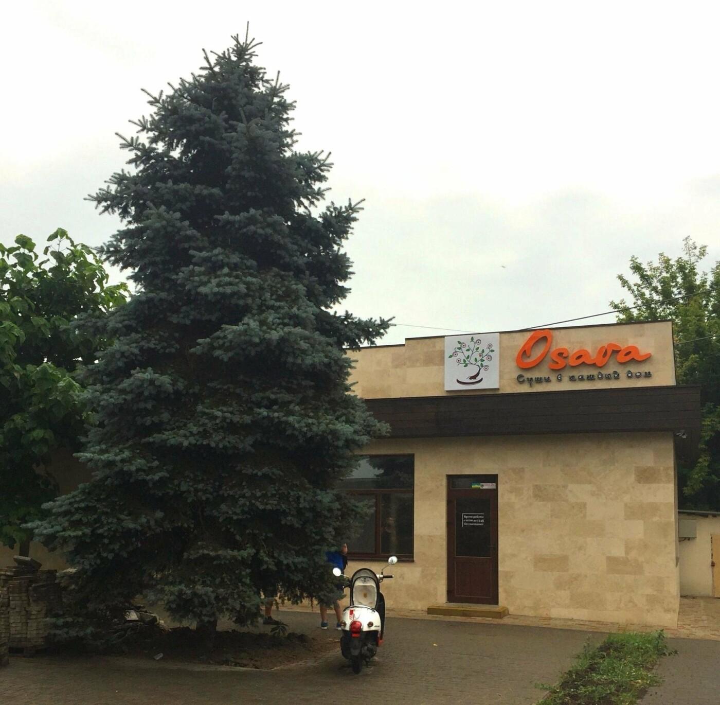 """Популярный онлайн-суши-бар """"Osava"""" открывает в Одессе новую локацию, фото-3"""