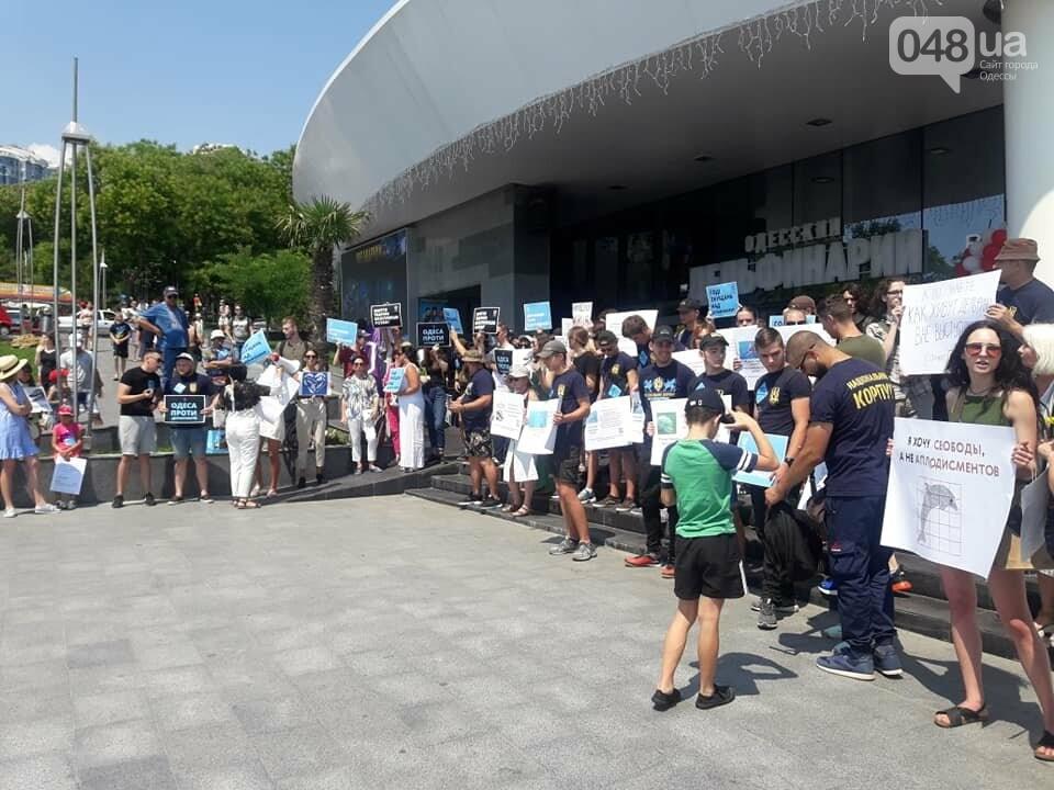 В Одессе зоозащитная акция против дельфинариев, - ФОТО , фото-3