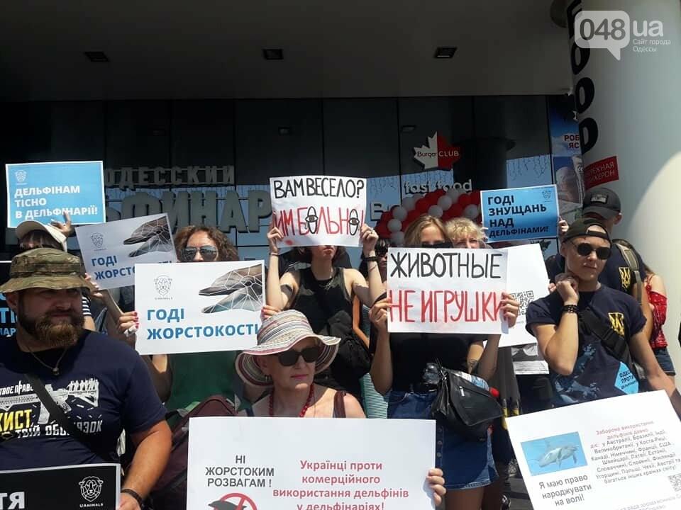 В Одессе зоозащитная акция против дельфинариев, - ФОТО , фото-4
