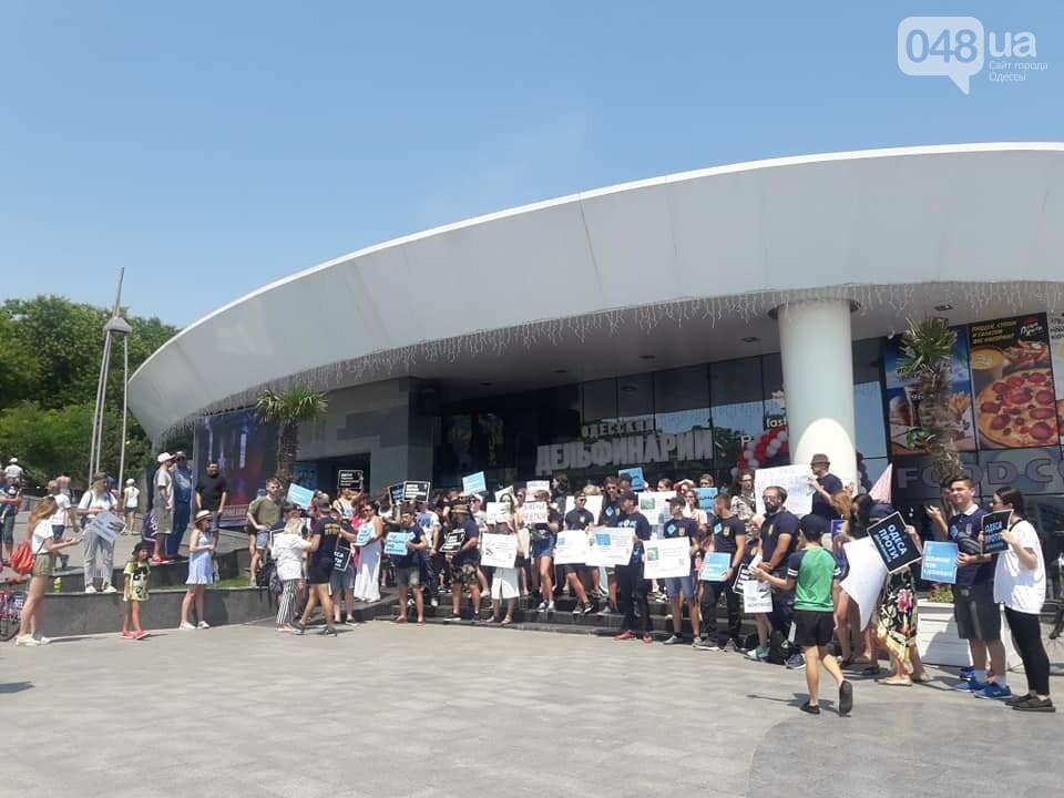 В Одессе зоозащитная акция против дельфинариев, - ФОТО , фото-6