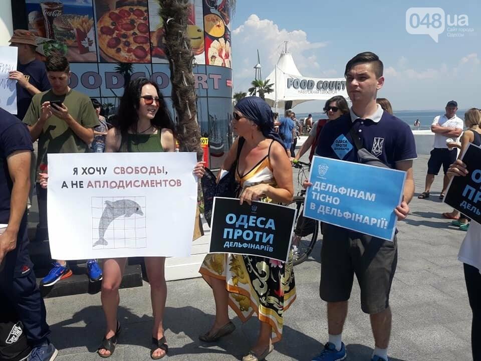 В Одессе зоозащитная акция против дельфинариев, - ФОТО , фото-8
