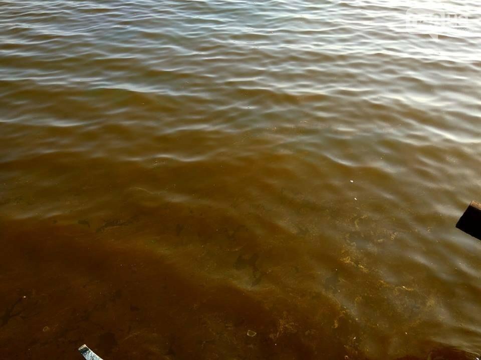 На поверхности моря одесситы заметили маслянистые рыжие пятна: они токсичны, - ФОТО, фото-1