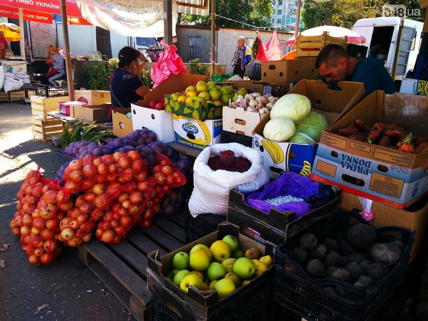 Ищем, где дешевле в Одессе: обзор цен на продукты на рынках Котовского, - ФОТО, ИНФОГРАФИКА, фото-17