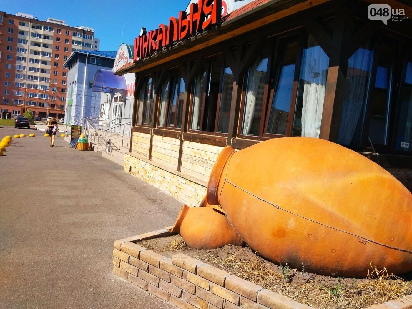 Ищем, где дешевле в Одессе: обзор цен на продукты на рынках Котовского, - ФОТО, ИНФОГРАФИКА, фото-9