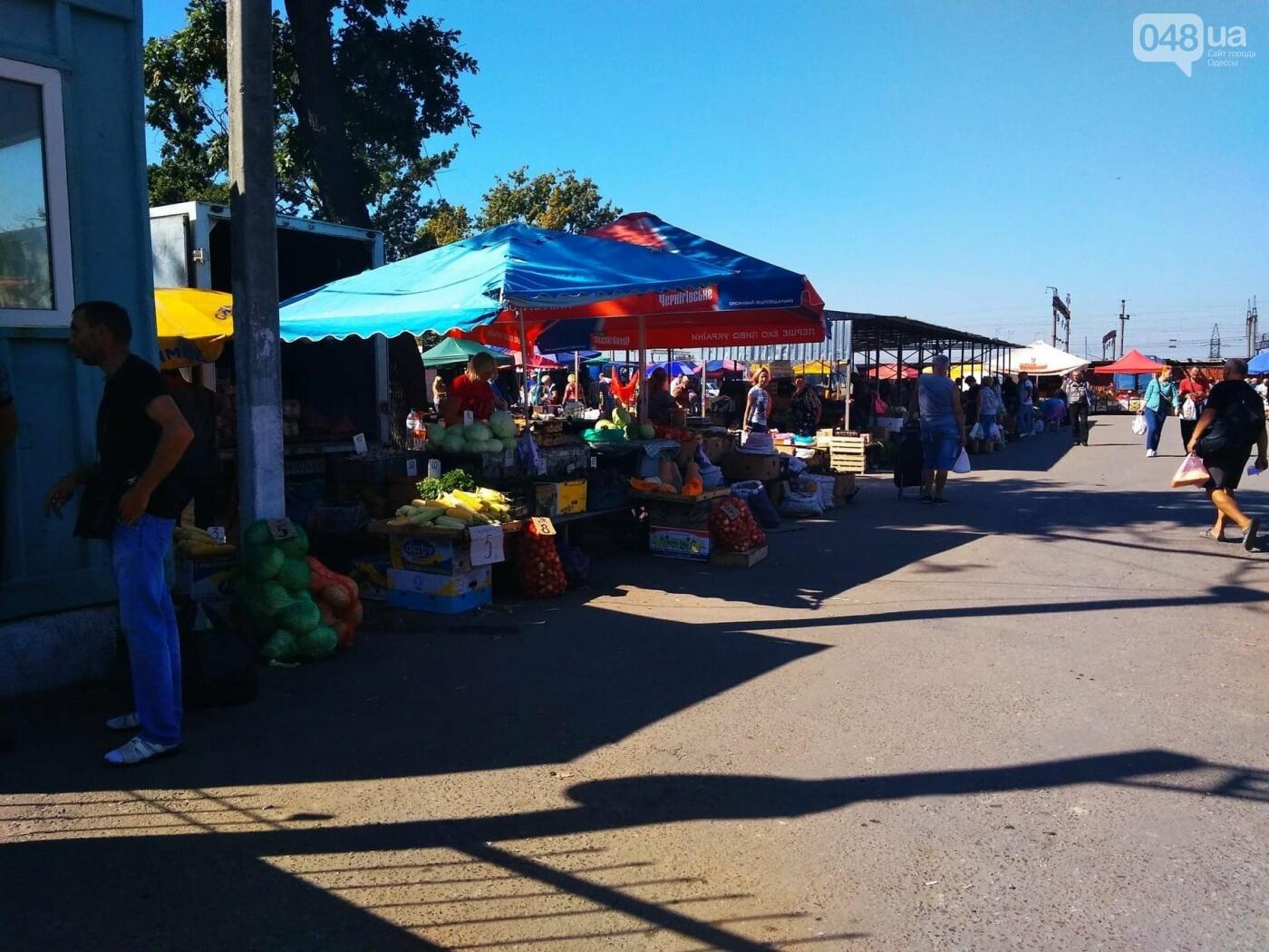 Ищем, где дешевле в Одессе: обзор цен на продукты на рынках Котовского, - ФОТО, ИНФОГРАФИКА, фото-1