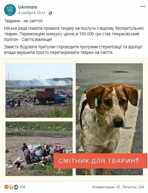 Кошмар зоозащитника: в Одесской области «позаботиться» о собаках поручено мусорной свалке, - ФОТО, ДОКУМЕНТЫ, фото-1
