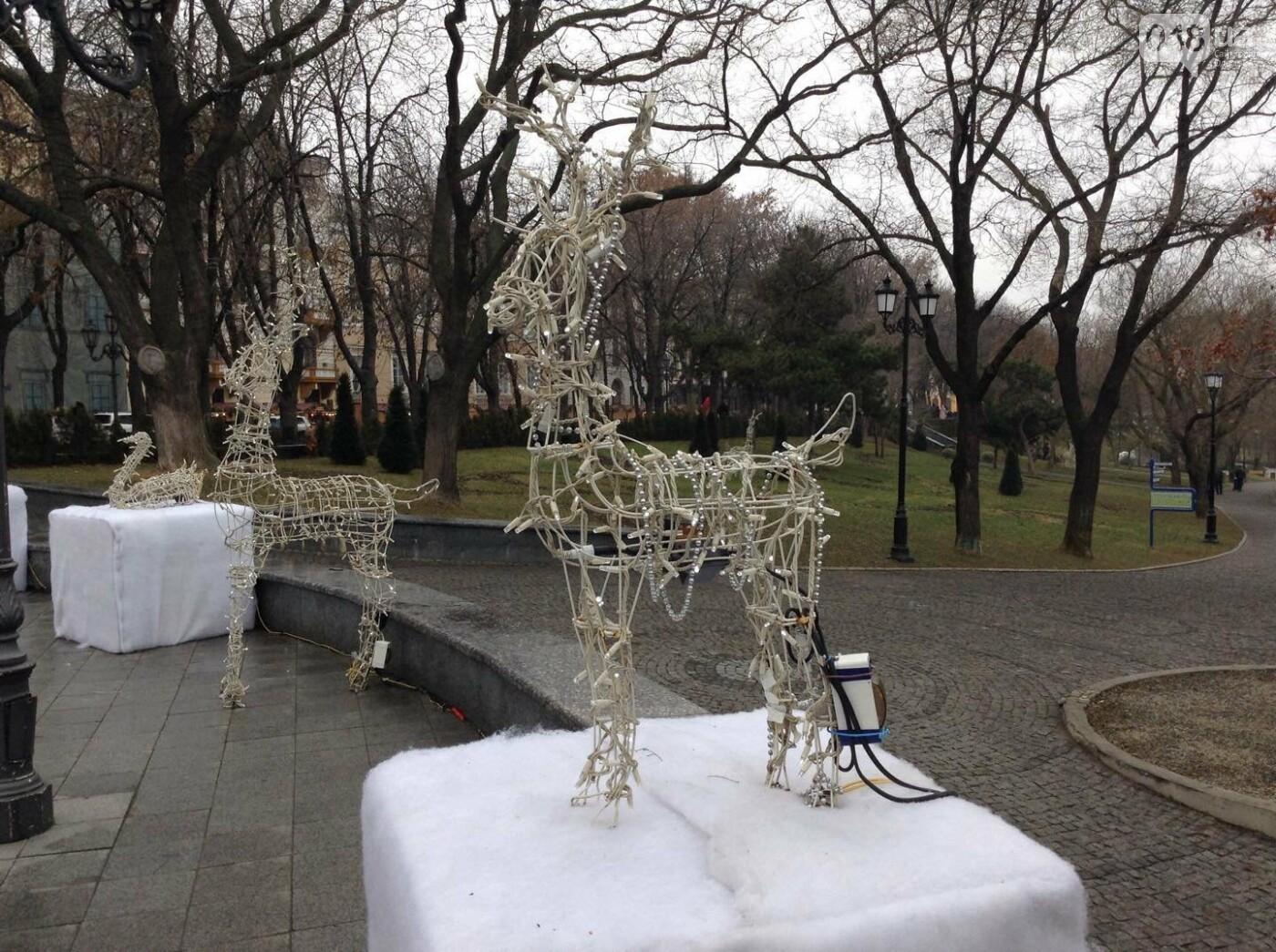 """Новогодняя иллюминация от горсовета """"отсвечивает"""" уголовными делами, - ФОТО, фото-14"""