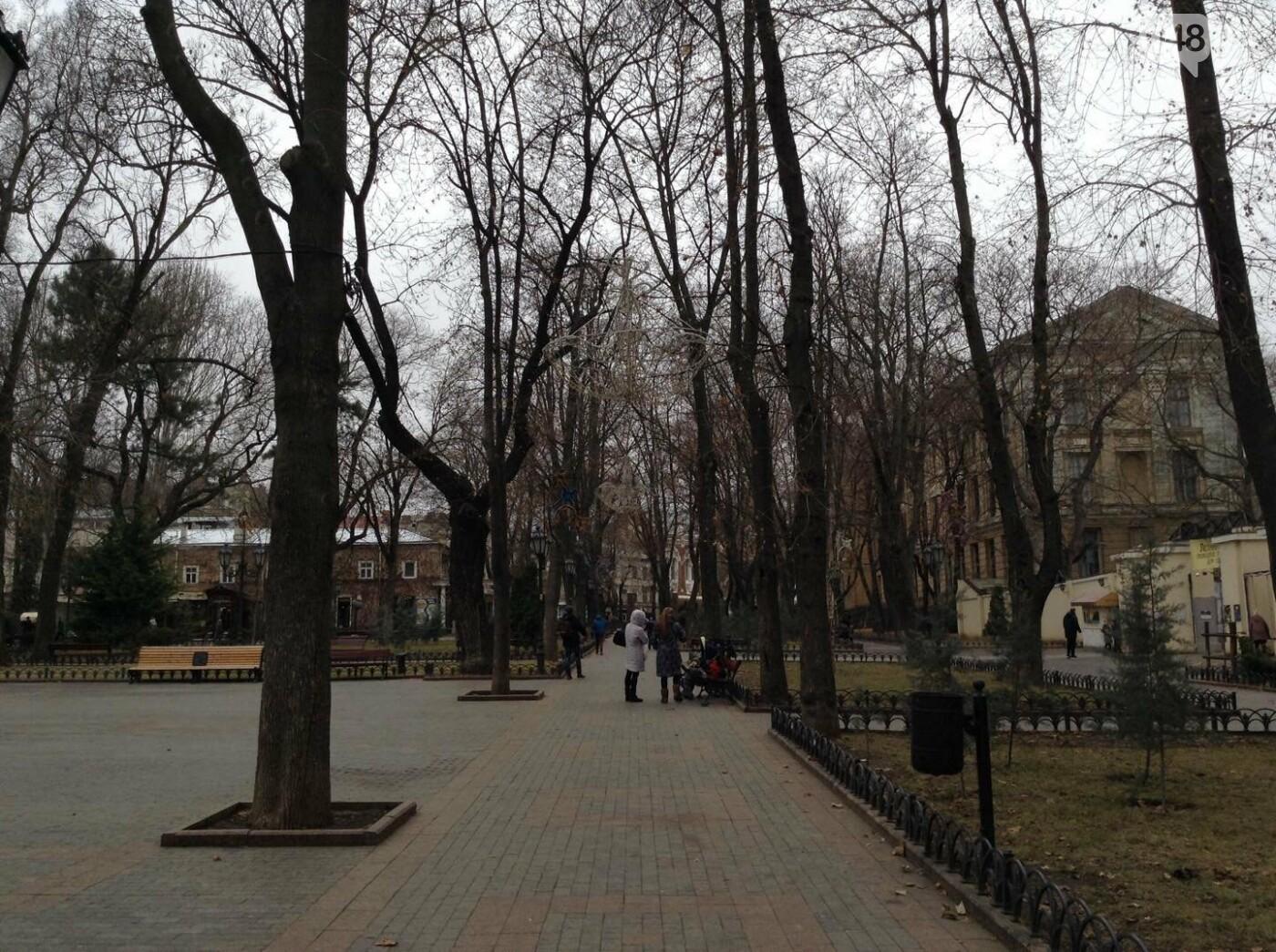 """Новогодняя иллюминация от горсовета """"отсвечивает"""" уголовными делами, - ФОТО, фото-35"""