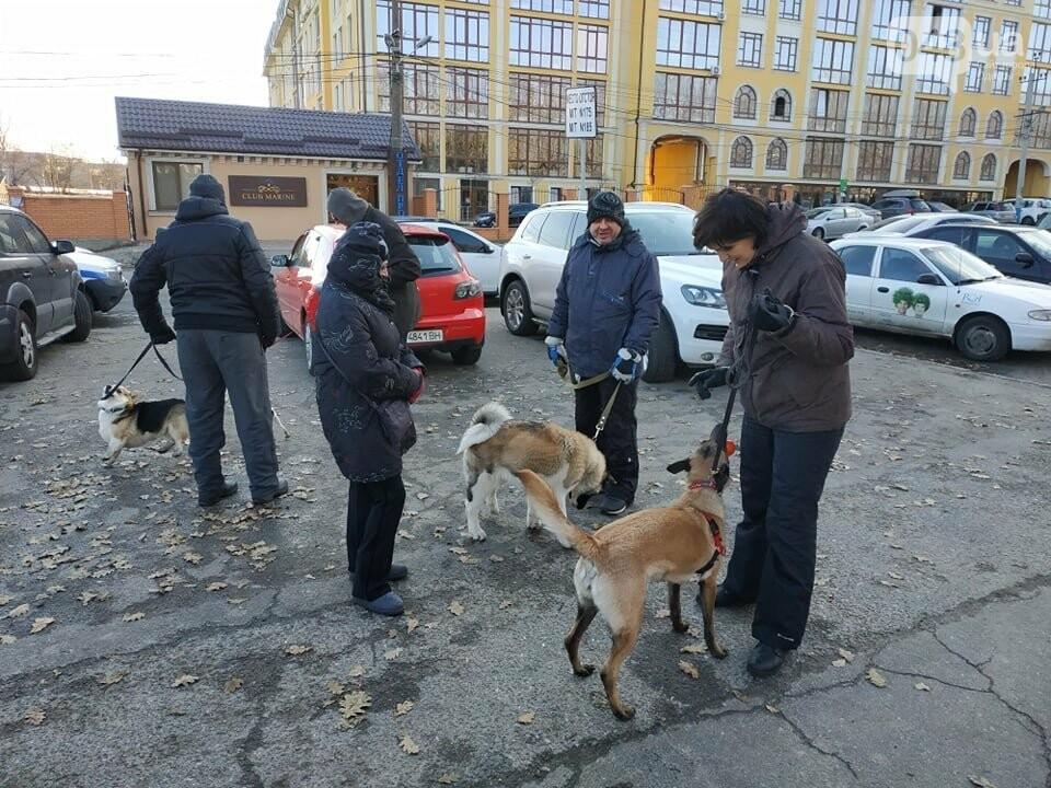 Активисты отвоевывают незаконно захваченный участок одесского парка, - ФОТО, ВИДЕО , фото-13