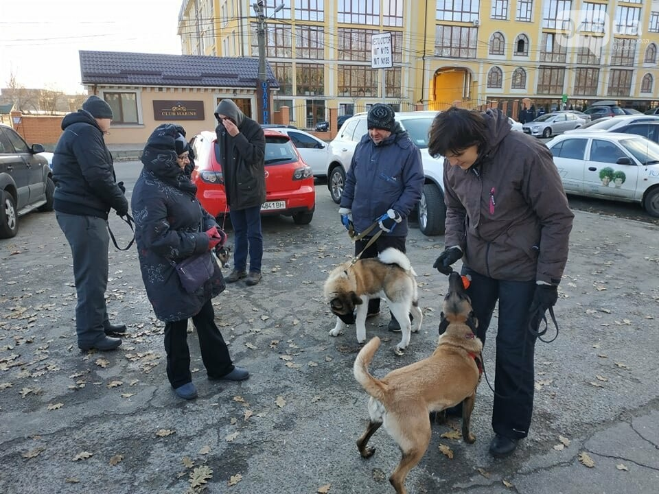 Активисты отвоевывают незаконно захваченный участок одесского парка, - ФОТО, ВИДЕО , фото-11