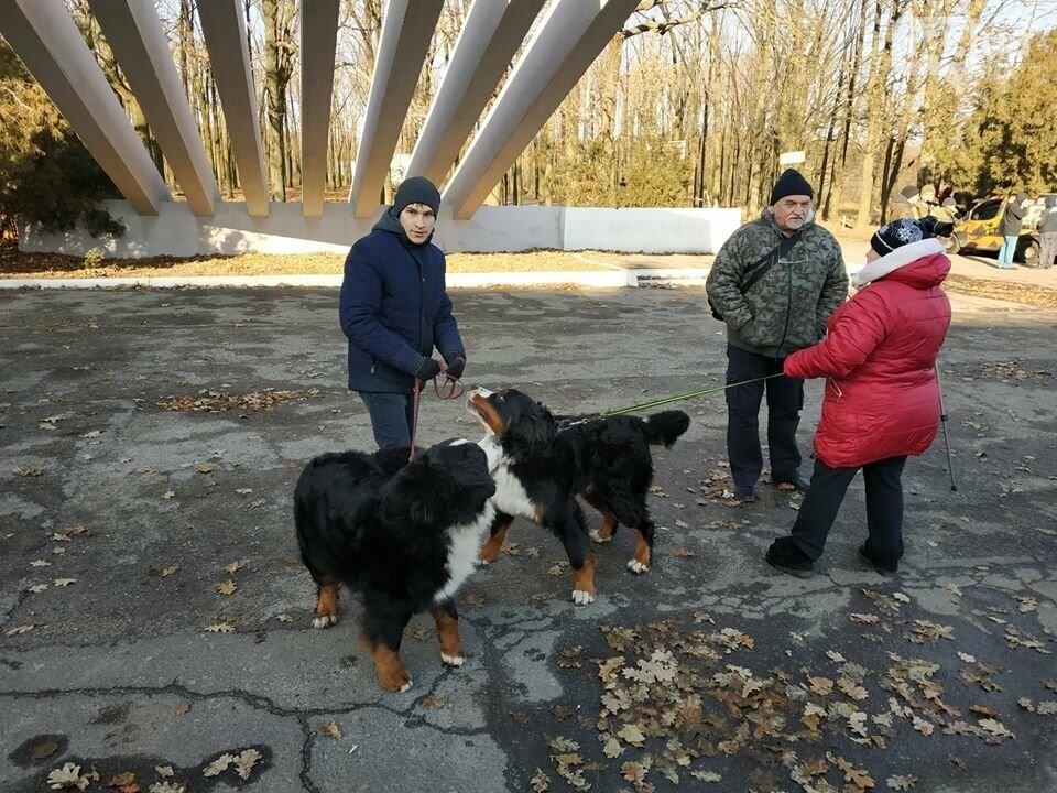 Активисты отвоевывают незаконно захваченный участок одесского парка, - ФОТО, ВИДЕО , фото-24