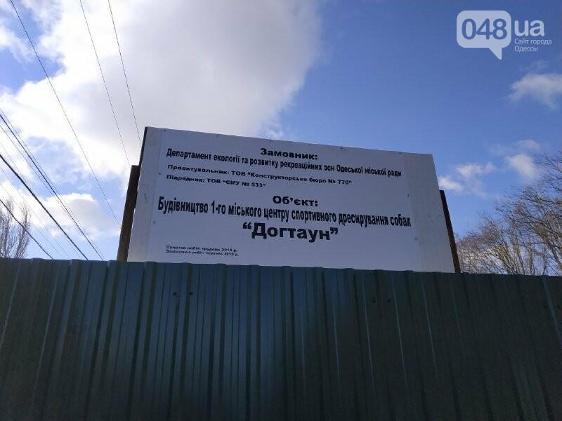 """Страсти по """"Догтауну"""": одесский городской совет против активистов, - ФОТО, ВИДЕО, фото-5"""