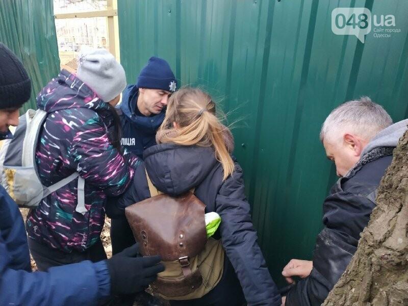 """Страсти по """"Догтауну"""": одесский городской совет против активистов, - ФОТО, ВИДЕО, фото-14"""