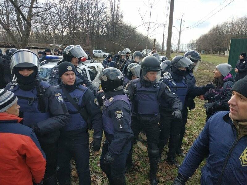 """Страсти по """"Догтауну"""": одесский городской совет против активистов, - ФОТО, ВИДЕО, фото-43"""