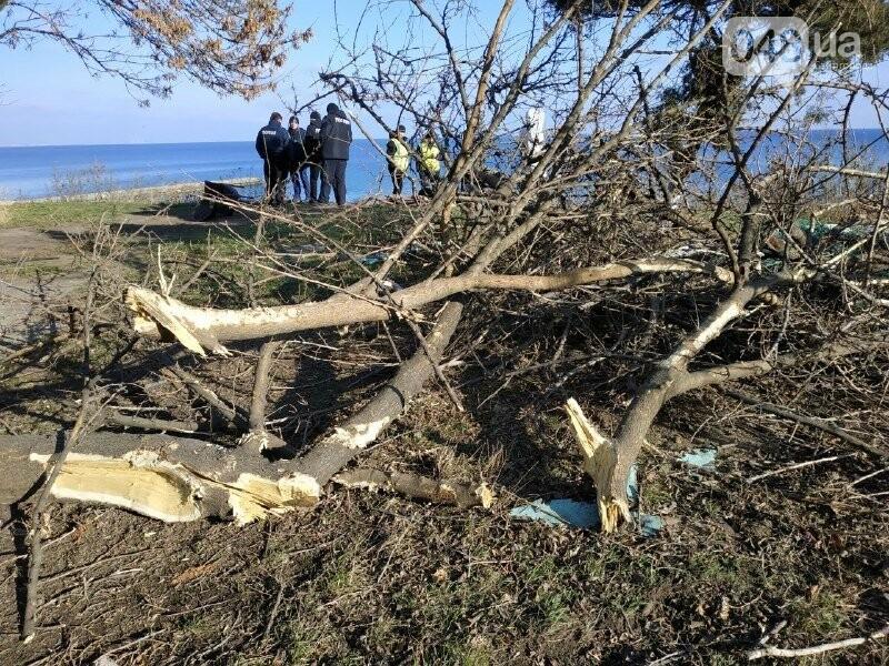 Разгром Чкаловского пляжа в Одессе: что произошло и кому это нужно, - ФОТО, фото-12