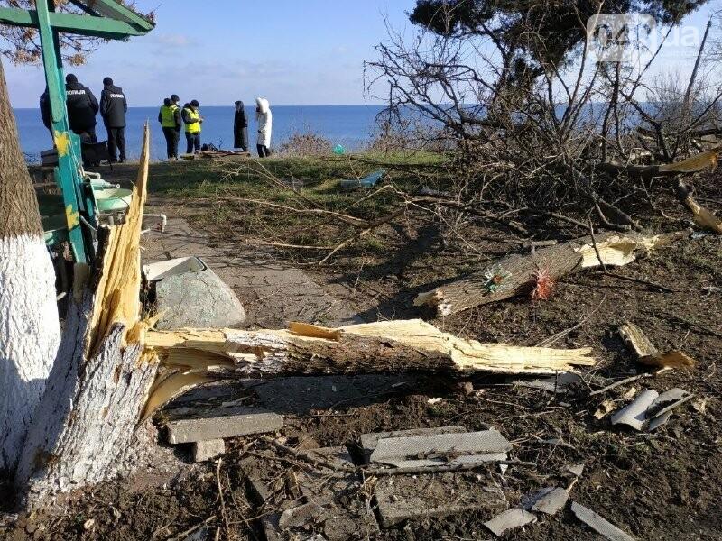 Разгром Чкаловского пляжа в Одессе: что произошло и кому это нужно, - ФОТО, фото-14