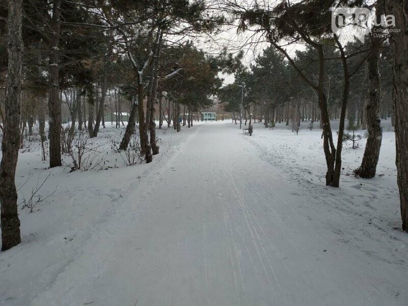 Зима в одесском Парке Победы: снежный фоторепортаж, - ФОТО, фото-5